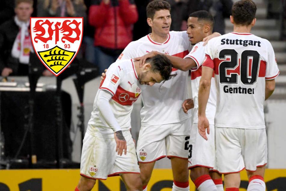 Gegen favorisiertes Borussia Mönchengladbach: VfB Stuttgart muss überraschen!
