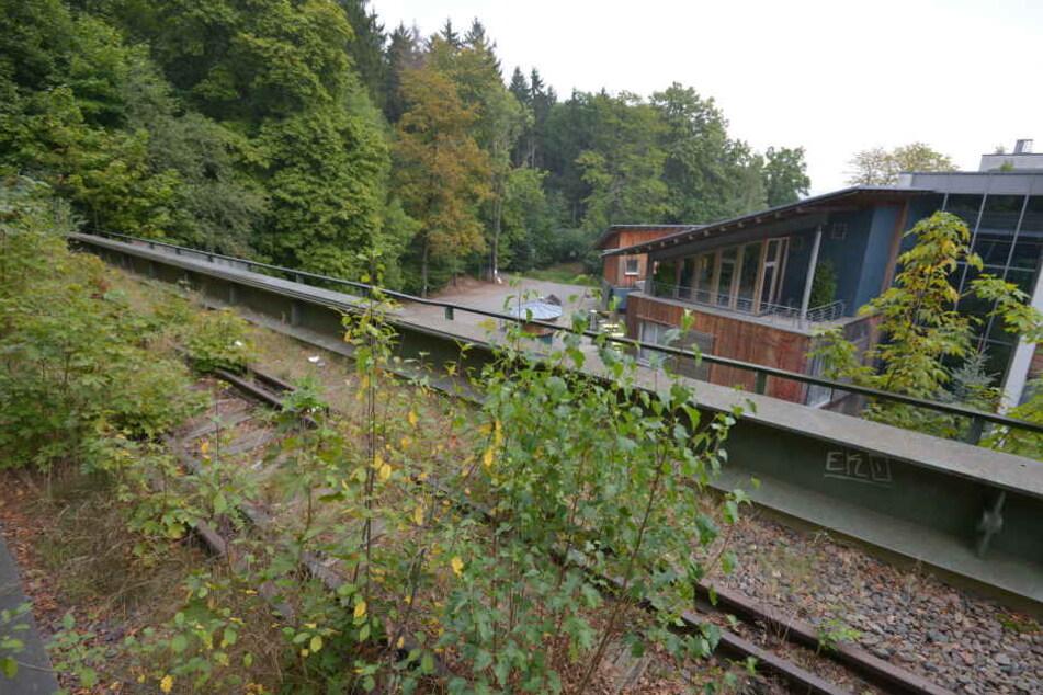 Auf der alten Bahnlinie Küchwald-Reichenbrand (hier am Forsthaus Grüna) soll ein neuer Radweg entstehen.