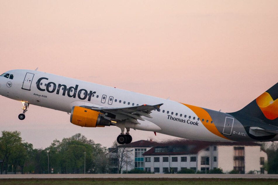 Condor stockt Angebot ab Düsseldorf massiv auf