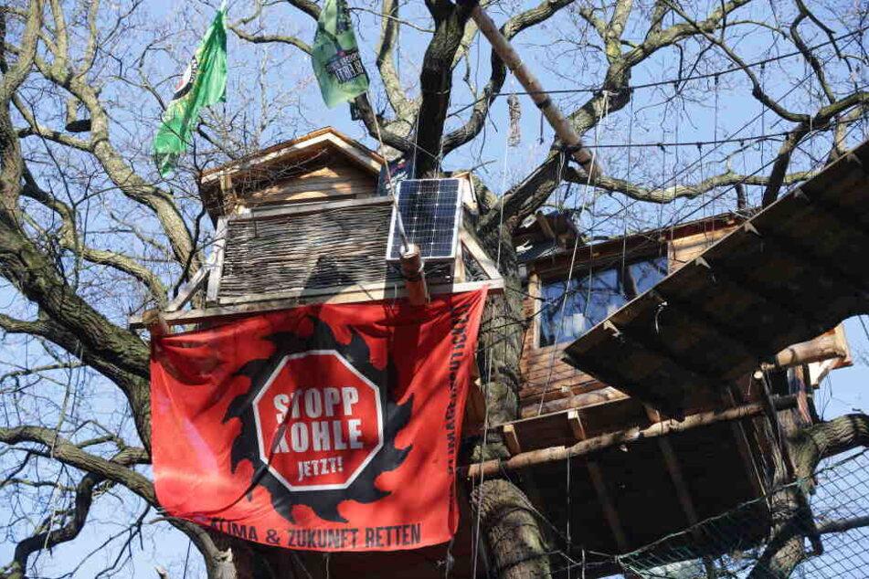 """Ein Transparent """"Stopp Kohle Jetzt!"""" an einem Baumhaus im Hambacher Forst."""