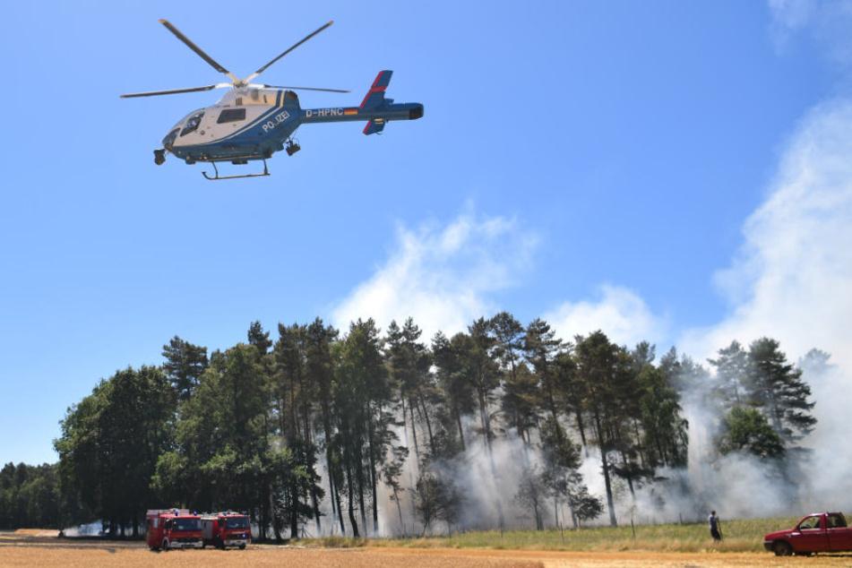 Ein Waldgebiet bei Wiechendorf in Niedersachsen ist in Brand geraten.