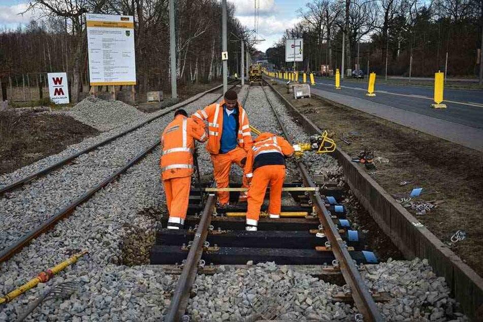 DVB-Mitarbeiter bereiten das Gleisbett der Linien 7 und 8 an der Königsbrücker Straße für die Gleisstopfmaschine vor.