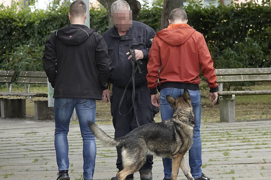 Was gefunden? Einer der angehenden Drogenspürhunde beschnüffelt einen Parkbesucher, der von einem Polizeischüler dargestellt wird.