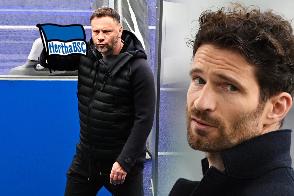 """Bleibt Dardai Hertha-Trainer? Friedrich will sich für Verbleib """"starkmachen"""""""