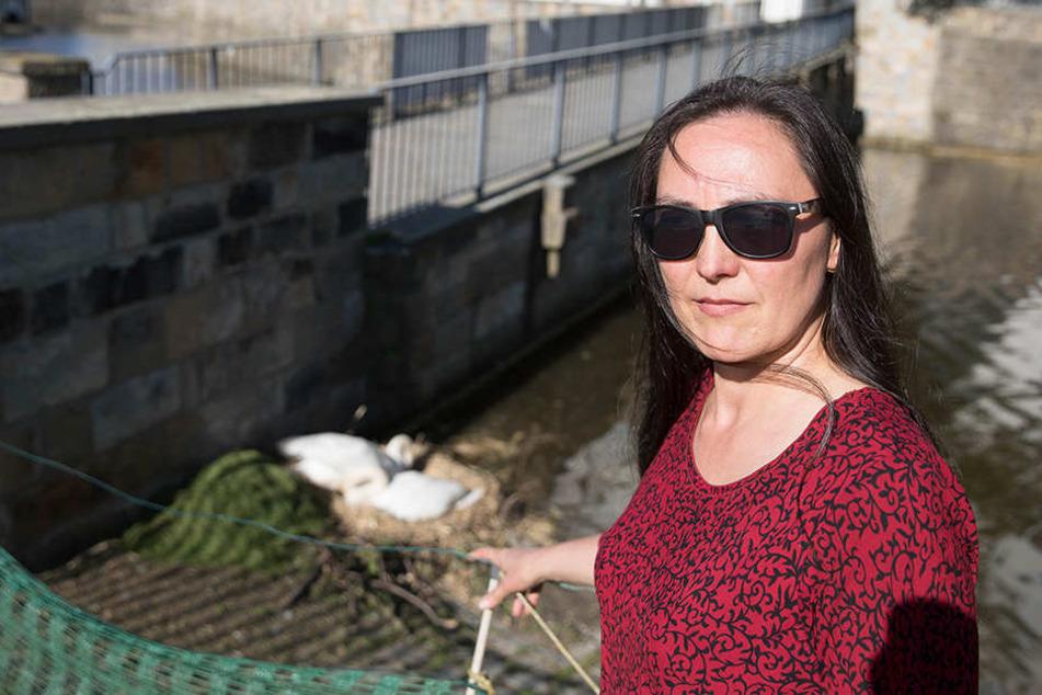 Die Verwaltung müsse sich endlich um die Schwäne kümmern oder sie in sachkundige Hände geben, fordert die grüne Ortschaftsrätin Manuela Schott (56).