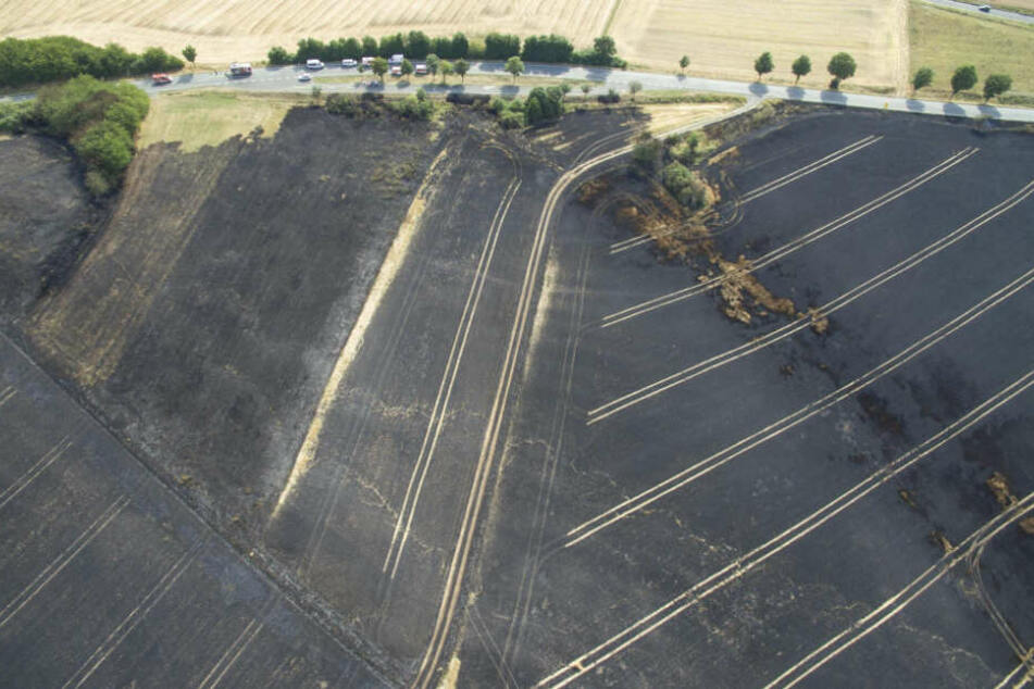 Alles verbrannt: Die Luftaufnahmen zeigen das verheerende Ausmaß des Feuers.
