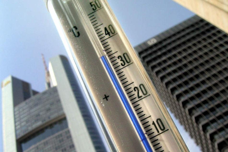 Die Temperaturen steigen vor allem in der Innenstadt. Schuld sind fehlende Grünanlagen und zu viele Anwohner. (Symbolbild)