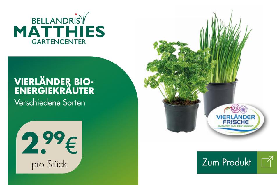 Vierländer Bio-Energiekräuter für 2,99 Euro