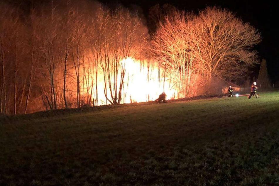 Flammen-Inferno: Laube bei Brand vernichtet
