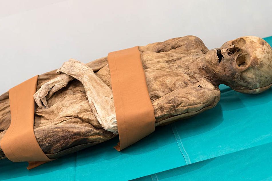 Mega-Entdeckung! Diese Mumie ist mit einem bekannten Außenminister verwandt