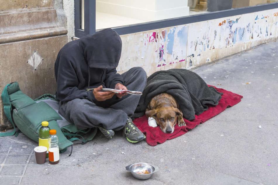 Obdachlose haben oft einen treuen Vierbeiner an ihrer Seite, der ihnen das Leben auf der Straße etwas erleichtert.