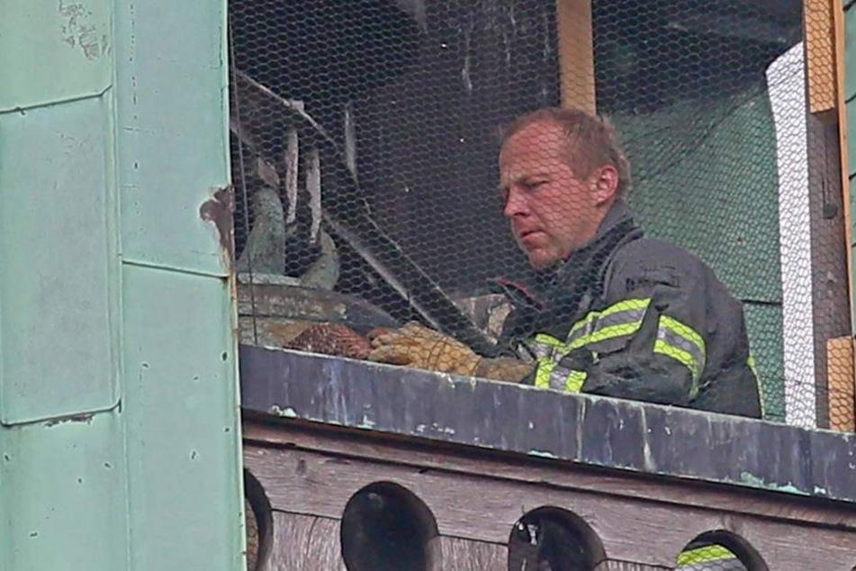 Die Feuerwehr musste den Falken händisch befreien.