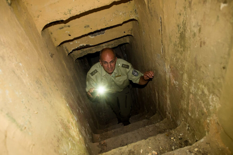 Holger Wille, Revierleiter Lindenwald, steigt auf dem Truppenübungsplatz Altmark die Treppe zu einem ehemaligen Bunker sowjetischer Bauart hinauf. Dort befindet sich ein Fledermausquartier.