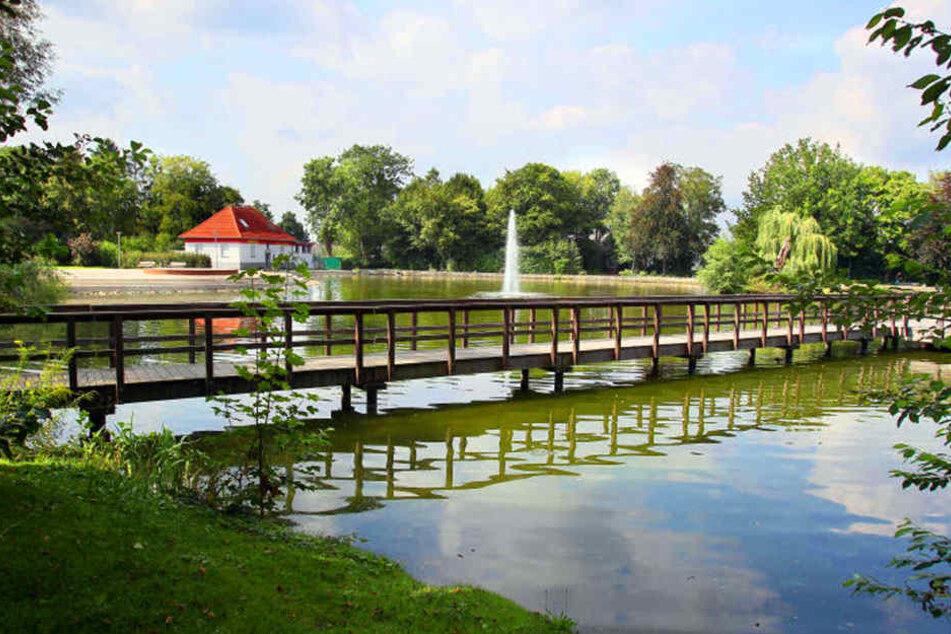 Eine Standort-Variante sieht einen Neubau im Steinmeisterpark vor.