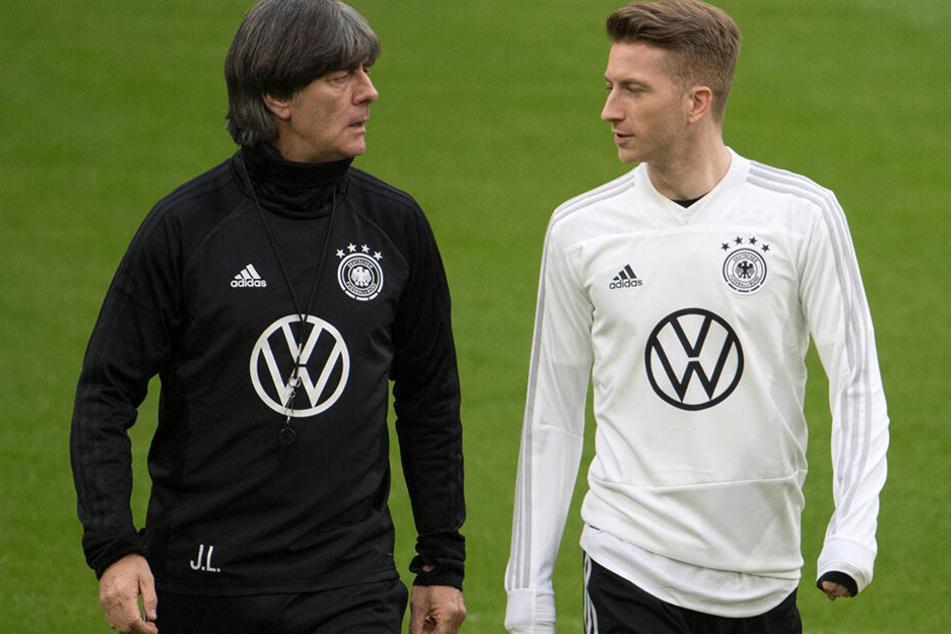 Marco Reus hätte gerne Mats Hummels wieder im DFB-Team, Joachim Löw bleibt jedoch hart und verzichtet auf den 30-Jährigen.