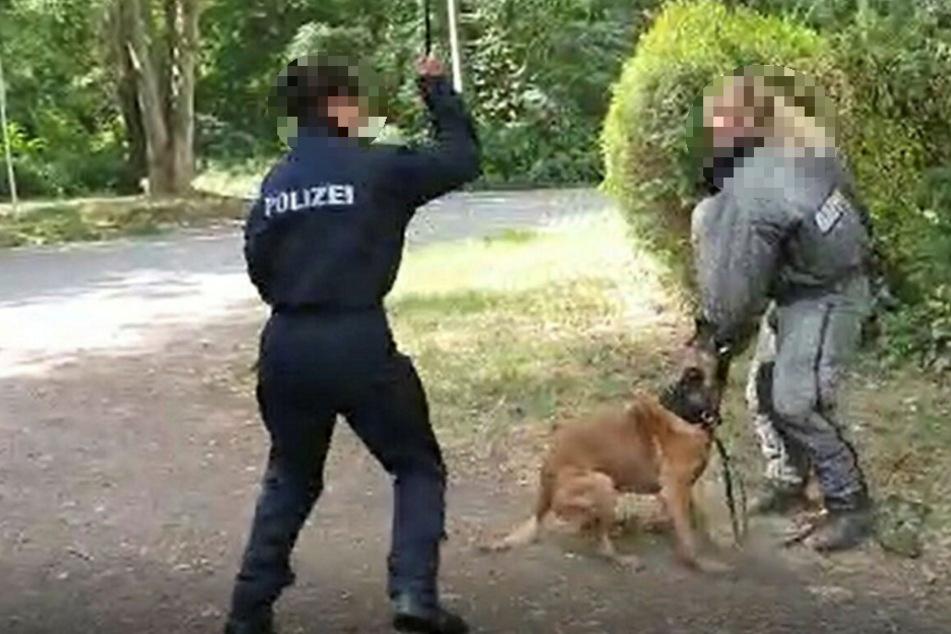 Schockierende Szenen: Bei einem Diensthundeführer-Lehrgang der Polizei in Leipzig schlugen zwei Beamtinnen brutal auf einen Malinois ein.