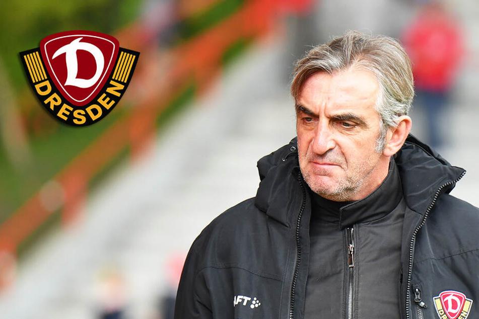 Dynamo-Sportchef Minge will mehr Geld für Spieler ausgeben und gibt Fehler zu