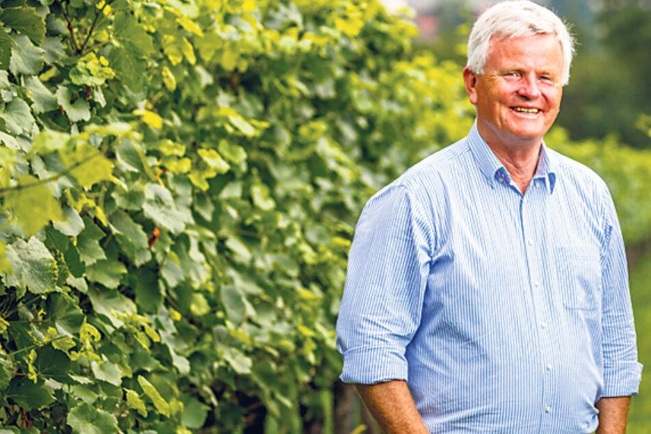 Georg Prinz zur Lippe (63) hat die Weinberge von Schloss Proschwitz zu einer Adresse für Weinliebhaber etabliert.