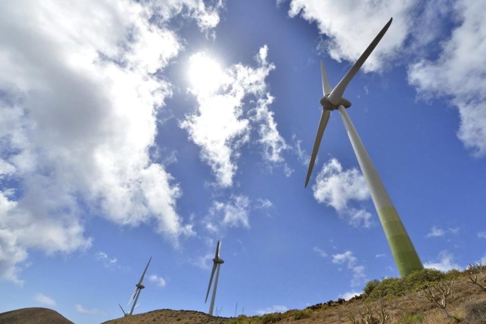49 neue Windräder wurden im vergangenen Jahr installiert (Symbolbild).