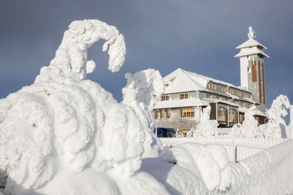 Winterwunderland Sachsen: Doch bleibt der Schnee auch bis Weihnachten?
