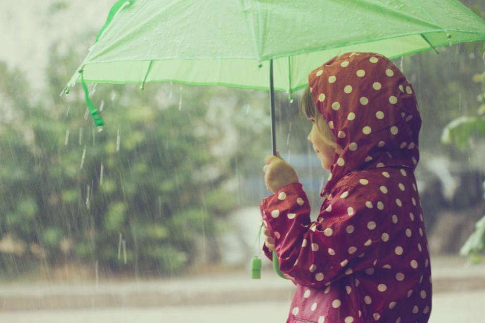 Die nächsten Wochen wird es wohl immer mal wieder regnerisch werden.