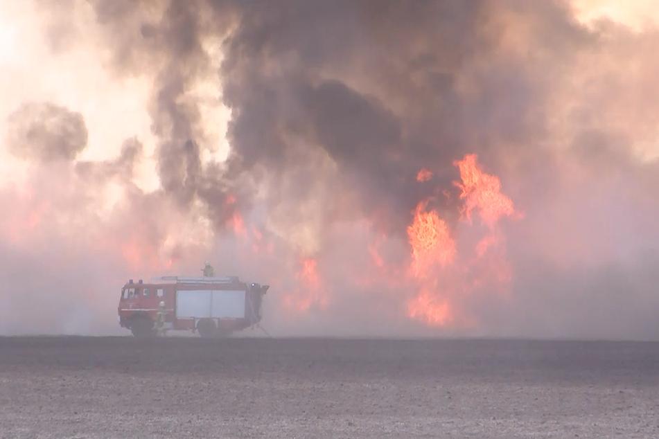 Die Flammen schlugen meterhoch in die Luft.