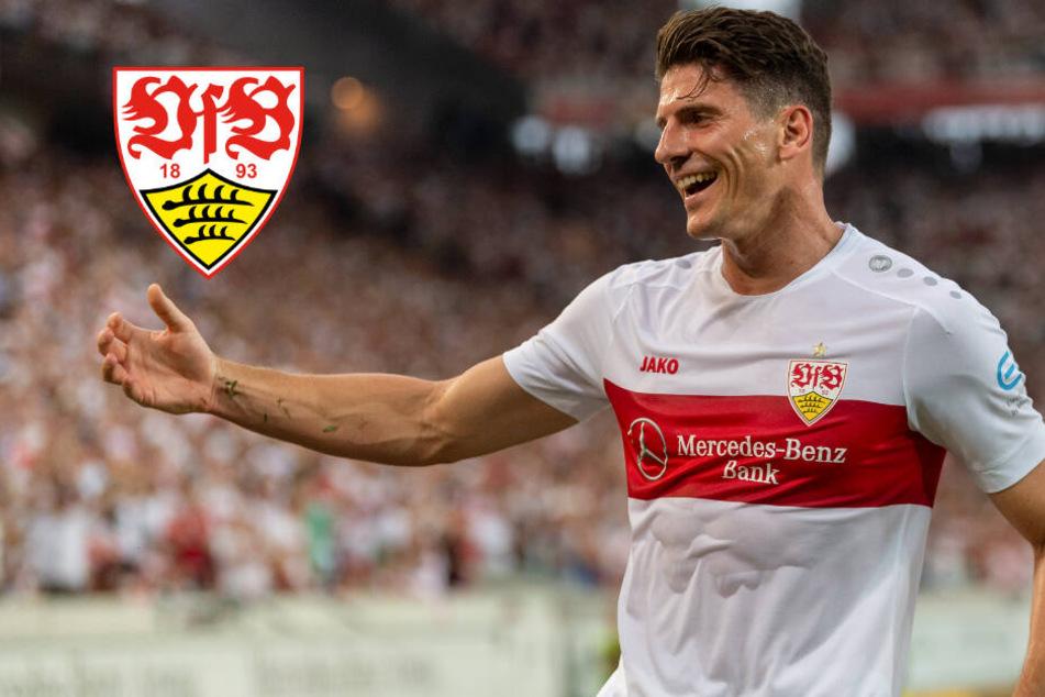 Saubere Arbeit: VfB gewinnt auch zweites Testspiel