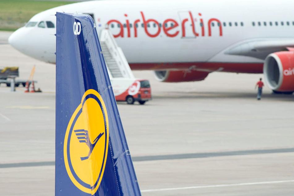 Air Berlin und Lufthansa verhandeln derzeit über eine Übernahme.