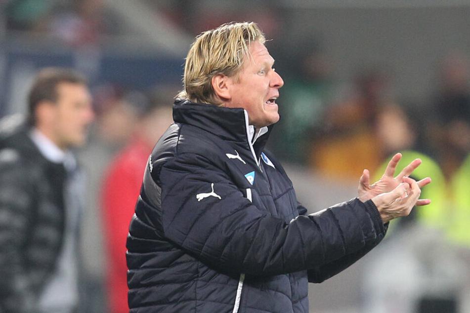Markus Gisdol hält regelmäßig Kontakt zu den Stuttgartern.