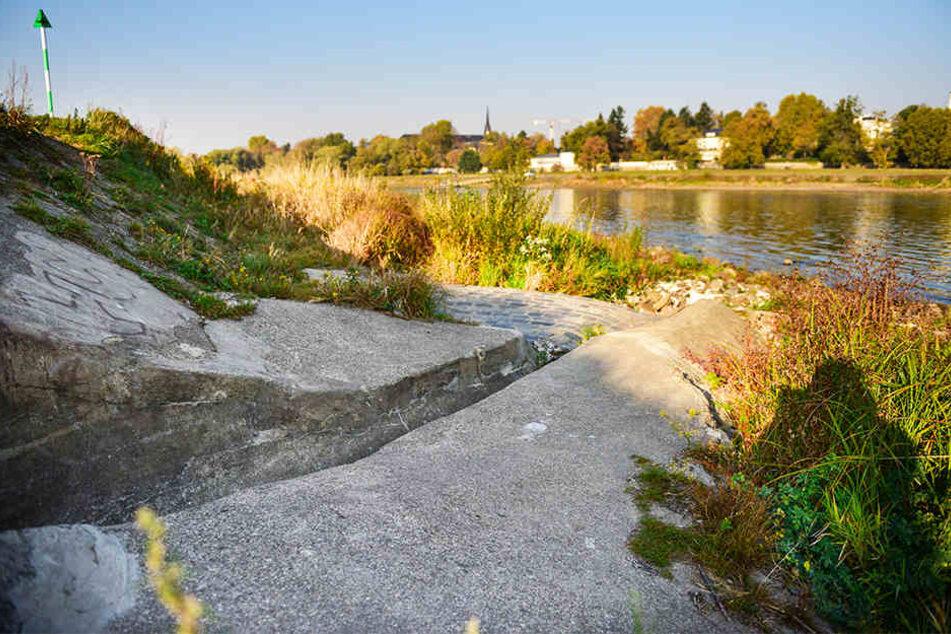 Die Experten vermuten, dass dieser Elbe-Auslass (wegen ausbleibenden Regens ebenfalls trocken) der Kanalisation den Mief verursachen könnte.