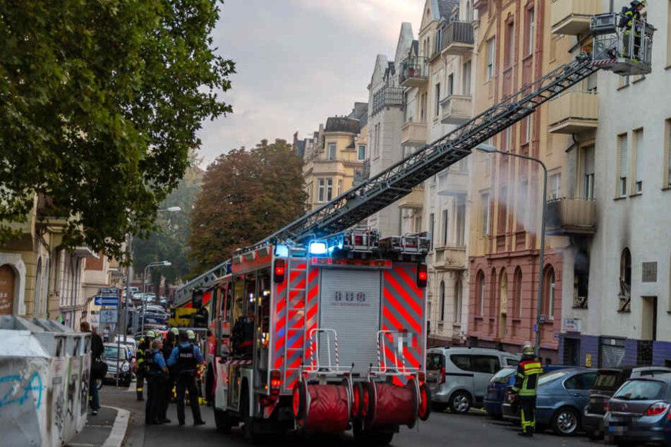 Bei dem Brand am Elsässer Platz entstand ein Schaden von rund 100.000 Euro.