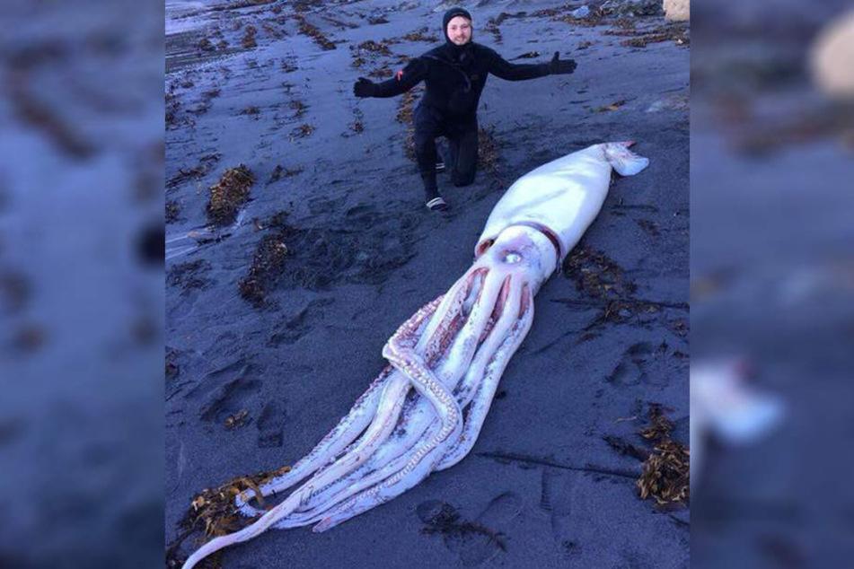 Dieses riesige Meereswesen wurde von den Brüdern entdeckt.