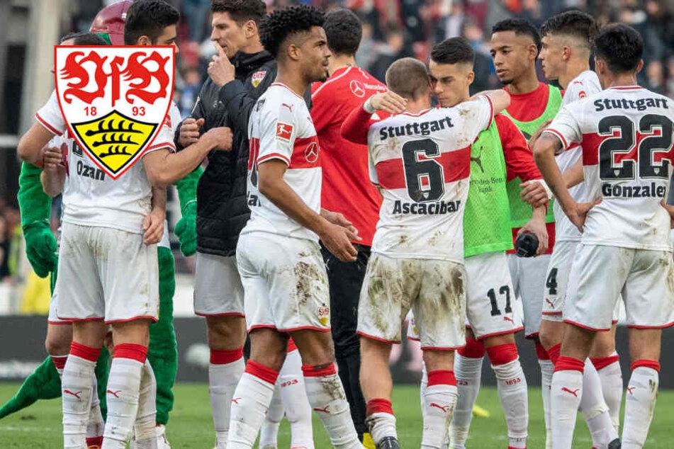 Harter Brocken: VfB muss in Frankfurt bei Europas Überfliegern ran