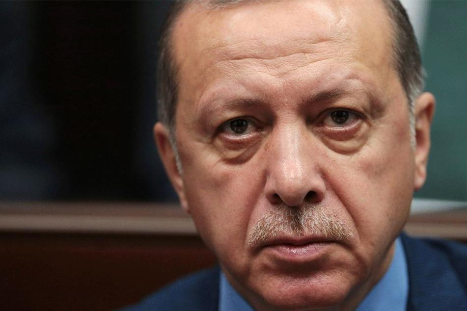 Was hat Erdogan mit den türkischen Schulen vor?