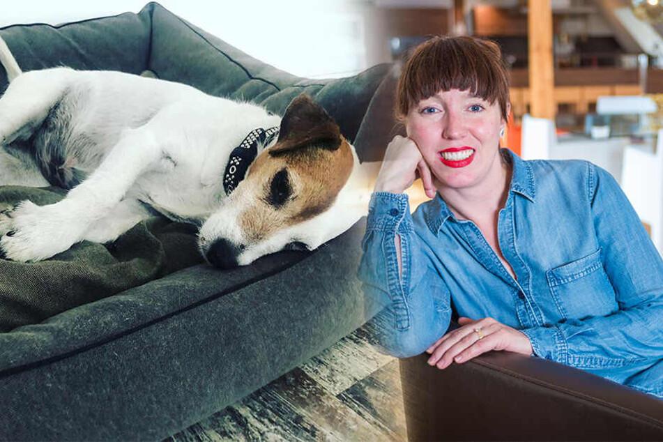 Weil sie von sich keine Fotos posten wollte, machte Susanne Meyer-Götz (42) ihren Jack Russell Terrier zum Netz-Star.