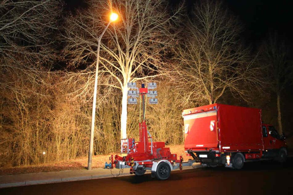 Ein Mann lag schwer verletzt in diesem Gebüsch im Stadtteil Ziegetsdorf in Regensburg.