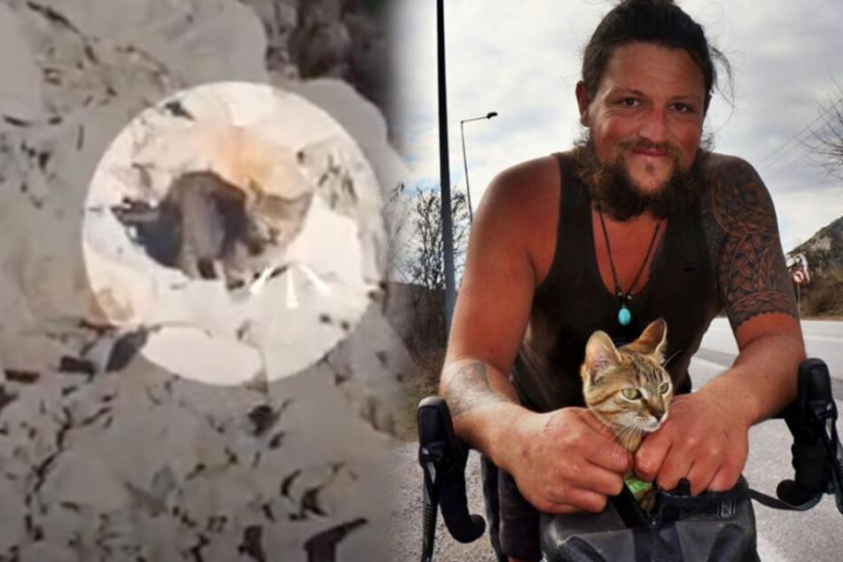 """Der Instagram Star von """"1bike1world"""" rettete die kleine Katze und nahm sie kurzerhand mit auf seine Weltreise."""