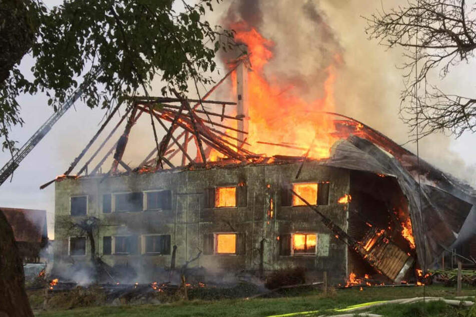 Tierstall in Lindau steht in Flammen: Mehrere hunderttausend Euro Schaden