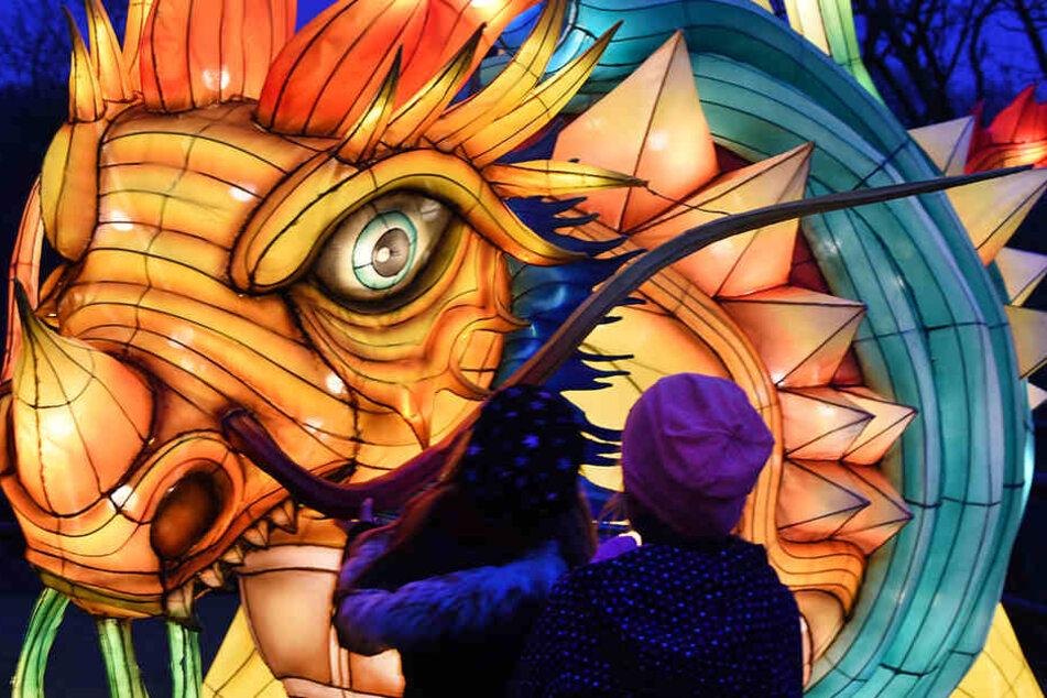 Drei Wochen lang zeigen chinesische Kunsthandwerker fast 300 leuchtende Kunstwerke in Form von Tieren, Pflanzen, Figuren und Fabelwesen.