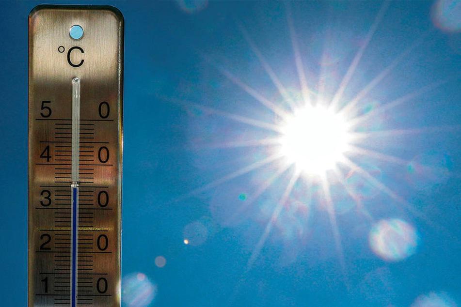 Es bleibt heiß! Auch für nächste Woche zeichnet sich noch keine Besserung ab.