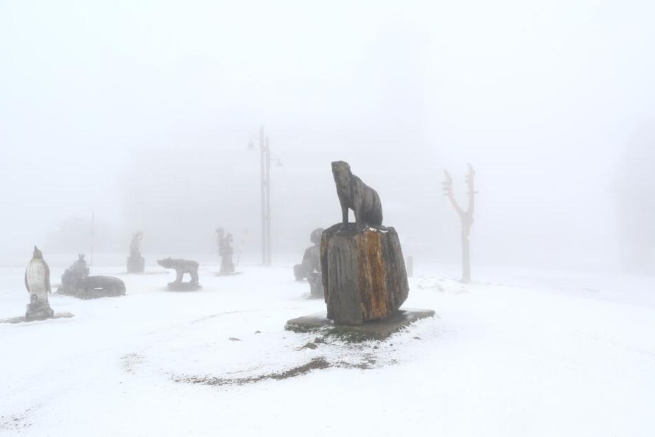 Am Montagmorgen sind auf dem Fichtelberg rund drei Zentimeter Neuschnee gefallen.