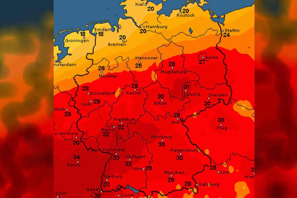 Laut wetteronline wird es am Mittwoch in Deutschland nochmal richtig heiß!