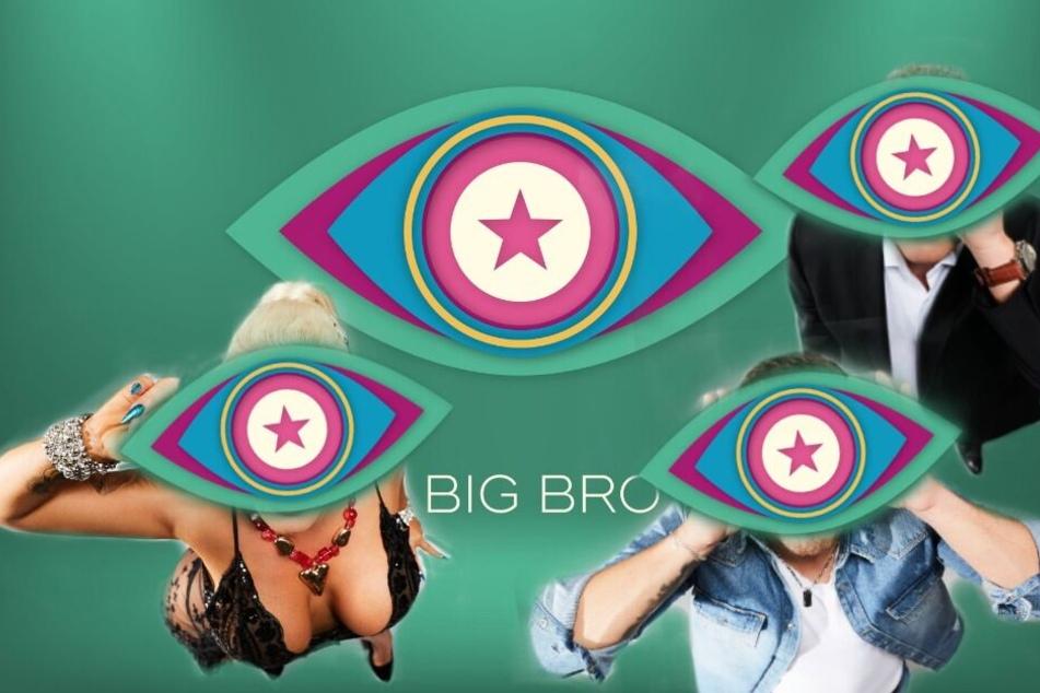 Promi Big Brother: Diese Kandidaten werden Euch umhauen