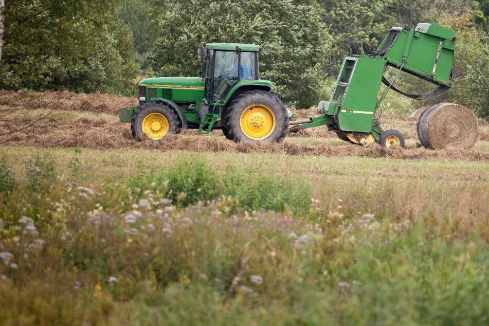 Der Mann verunglückte bei Heu-Arbeiten auf einem Feld in Tüßling. (Symbolbild)