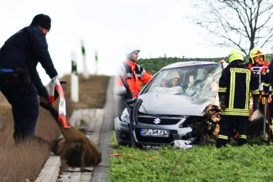 Auto kracht in Wildschwein: Feuerwehr muss Fahrerin aus dem Wrack schneiden!