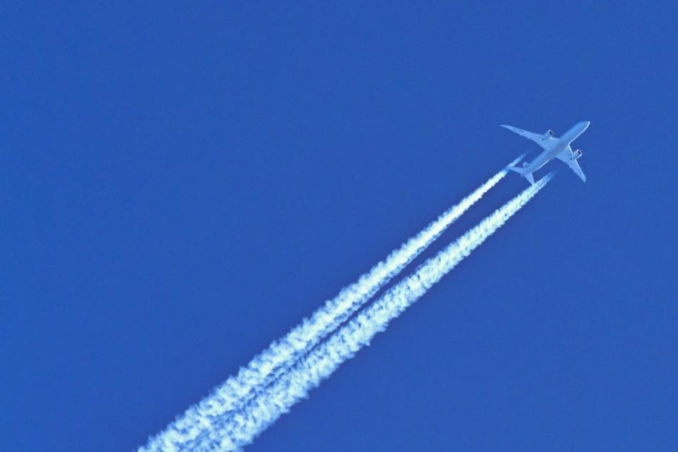 Ein Flugzeug am Himmel. US-Reisende aus Europa erwartet vorerst keine Lockerungen.