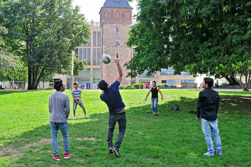 Am Mittwoch wurde das umstrittene Ballspielverbot im Stadtrat abgeschmettert.
