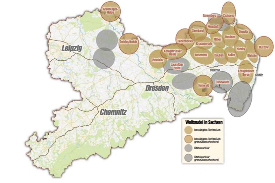 Die Karte zeigt die Wolfsreviere in Sachsen.