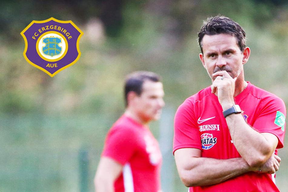 Aue-Coach Schuster will intensive erste Woche mit Sieg krönen!