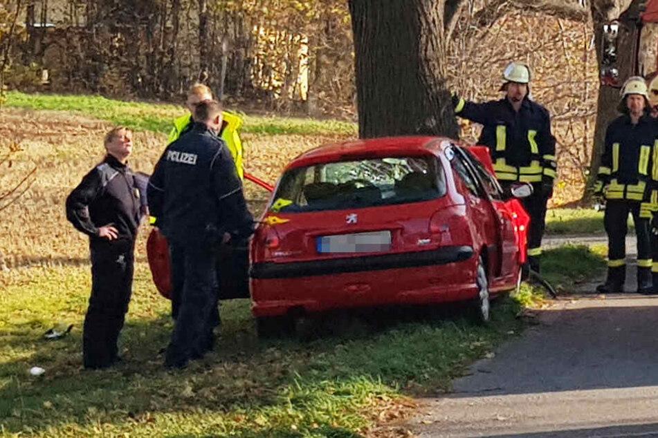 Die Frau knallte mit ihrem Peugeot frontal gegen einen Baum.
